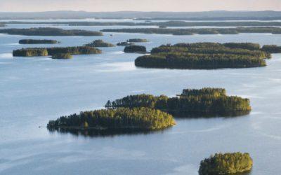 Suomalaisen kalan puolesta, eikä ketään vastaan